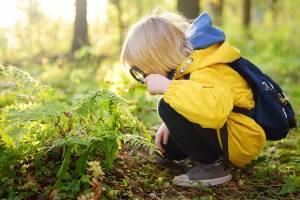 Kevätaktiviteetit, joita lapset rakastavat
